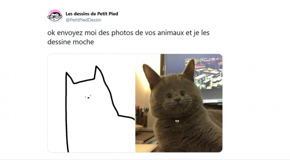 Image de couverture de l'article : Thread : Vos animaux dessinés… mais en moche !